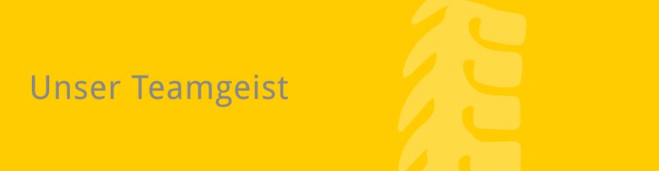 Navigationsbild: Teamgeist - Startseite